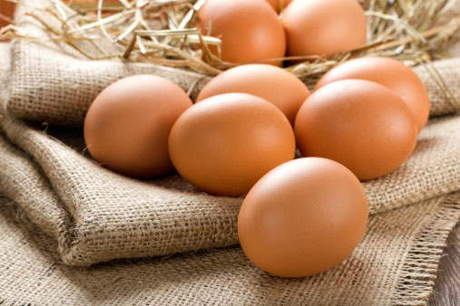 ovos orgânicos em Palmas no Tocantins – TO